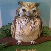 3D owl birthday cake