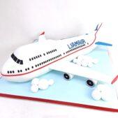 Birthday cake – Plane