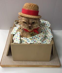 Cat in a box cake