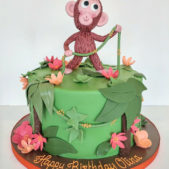 Childrens Birthday Cakes – Happy Birthday Olina