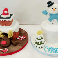 Christmas Cakes from Cakes by Robin
