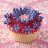 Cupcake £4.50