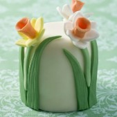 Daffodil miniature cake £9.50 each