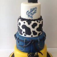 Denim 1st birthday cake