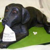 Labrador dog cake