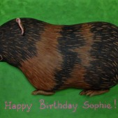 Guinea pig birthday cakeq