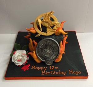 Hunger Games themed birthday cake
