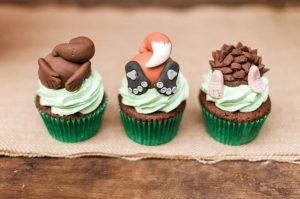 Woodland Party Cupcakes