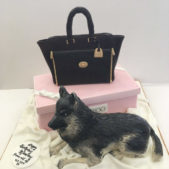 Jimmy Choo & Dog Cake