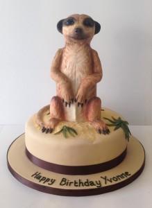 Meer Cat birthday cake
