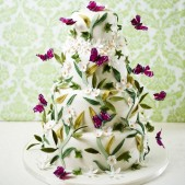 Midsummer night's Dream_Cakes by Robin_£725