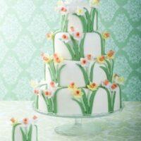 Spring-daffodil cake