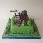 Thomas on a number 2 cake