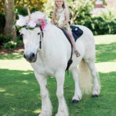 Unicorn Themed Party Image