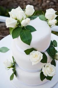 cake1-199x300