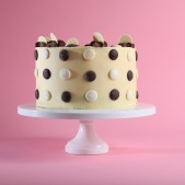 chocolate-button-patisserie-cake