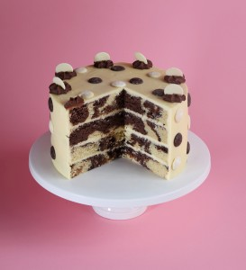 Chocolate button patisserie cake - look inside!