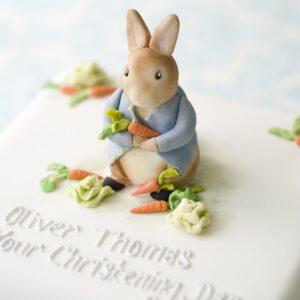 Peter Rabbit christening cake sugar model