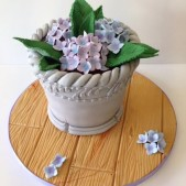 Garden design cake