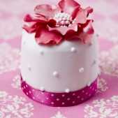 miniature_white_pink_flower_2