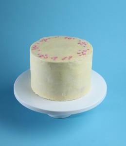 Patisserie cake jamp sponge