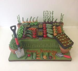 Allotment cake gardening birthday cake