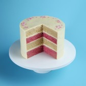 pink-white-layer-patisserie-cake