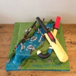 sports themed cake - hockey, cricket and fishing