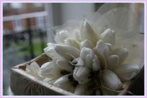 white-flowers-300x199