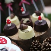 woodland theme birthday party inspiration (3)