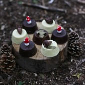 woodland theme birthday party inspiration (5)