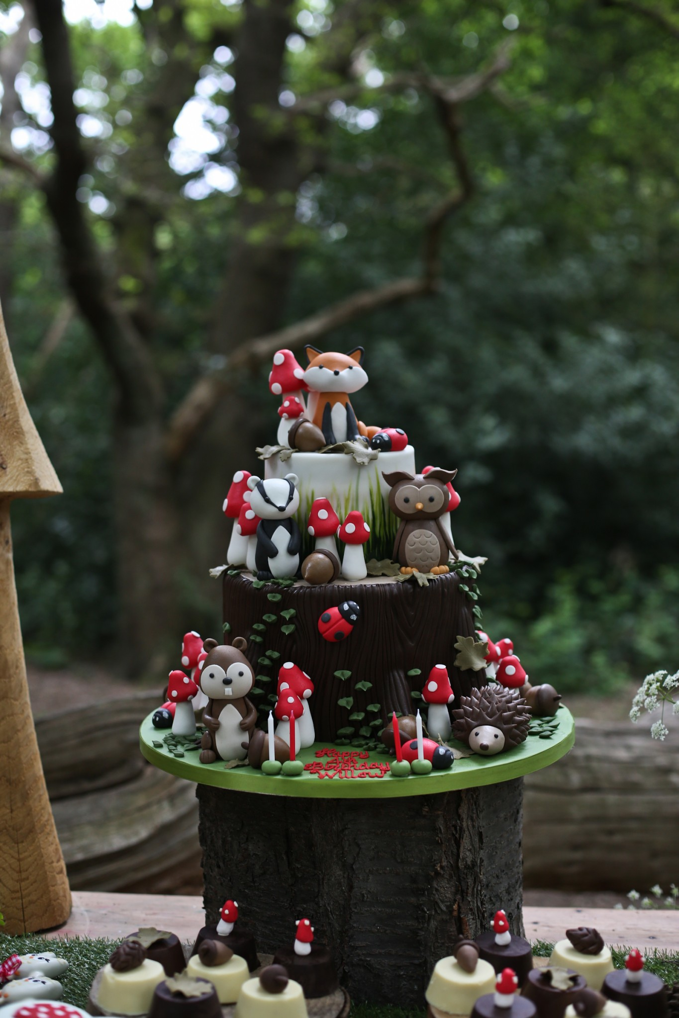 Children S Woodland Party Inspiration Cakes By Robin